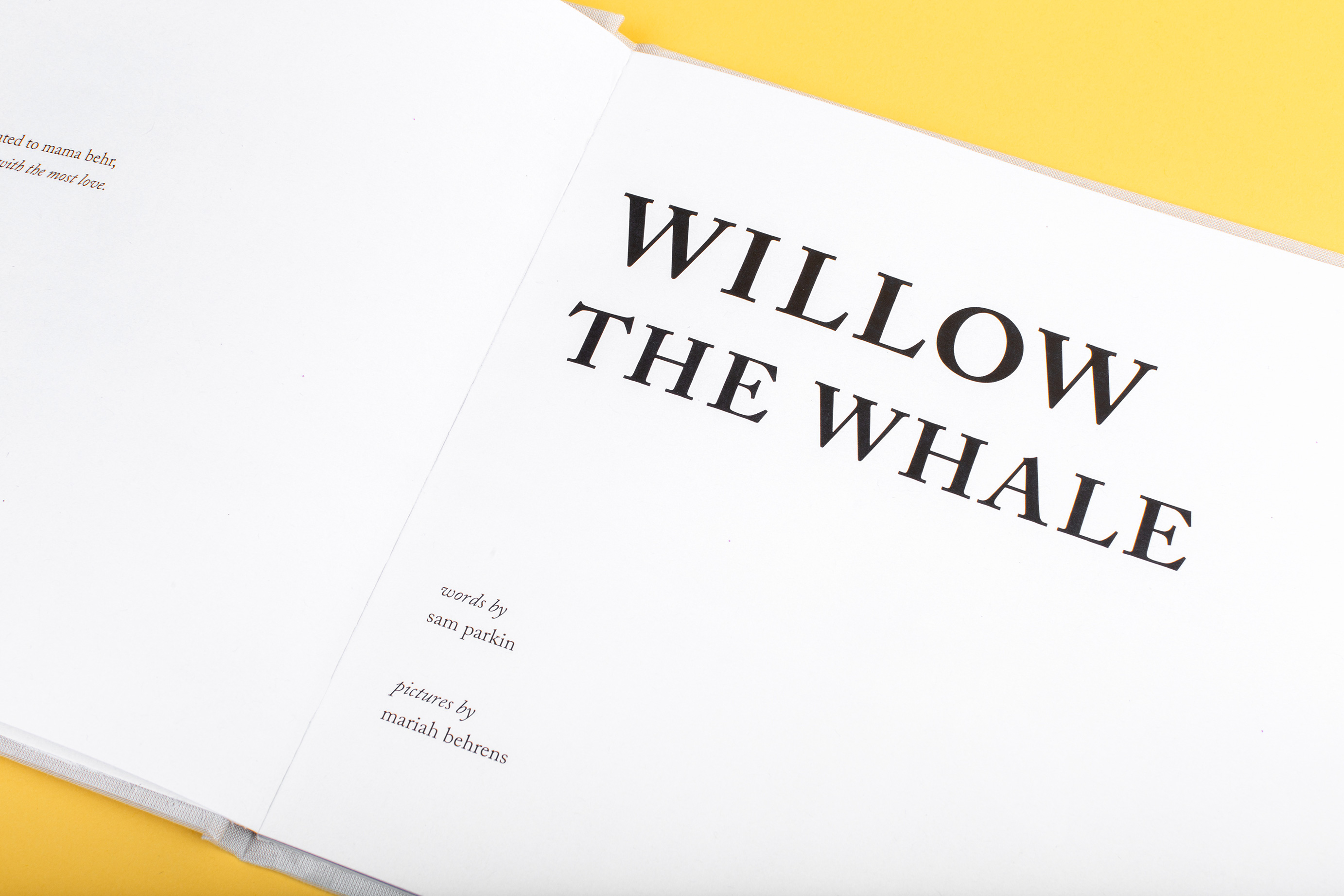 willow-12